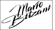 bitzani-mario-logo