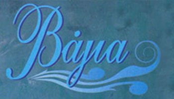 Logo-Bagia