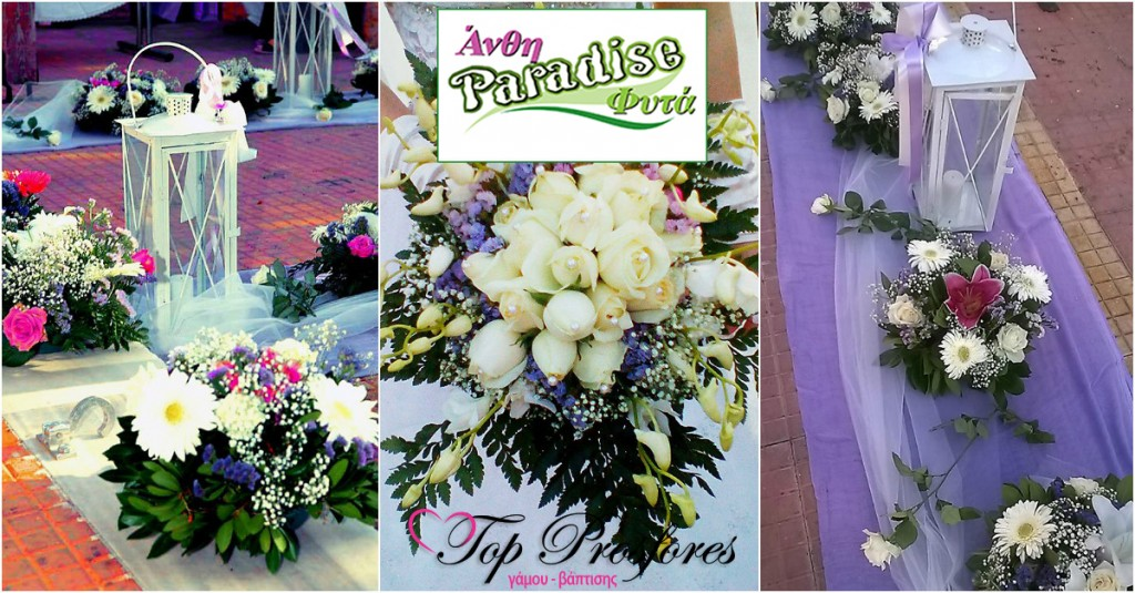 anthostolismos-topprosfores-paradiseflower
